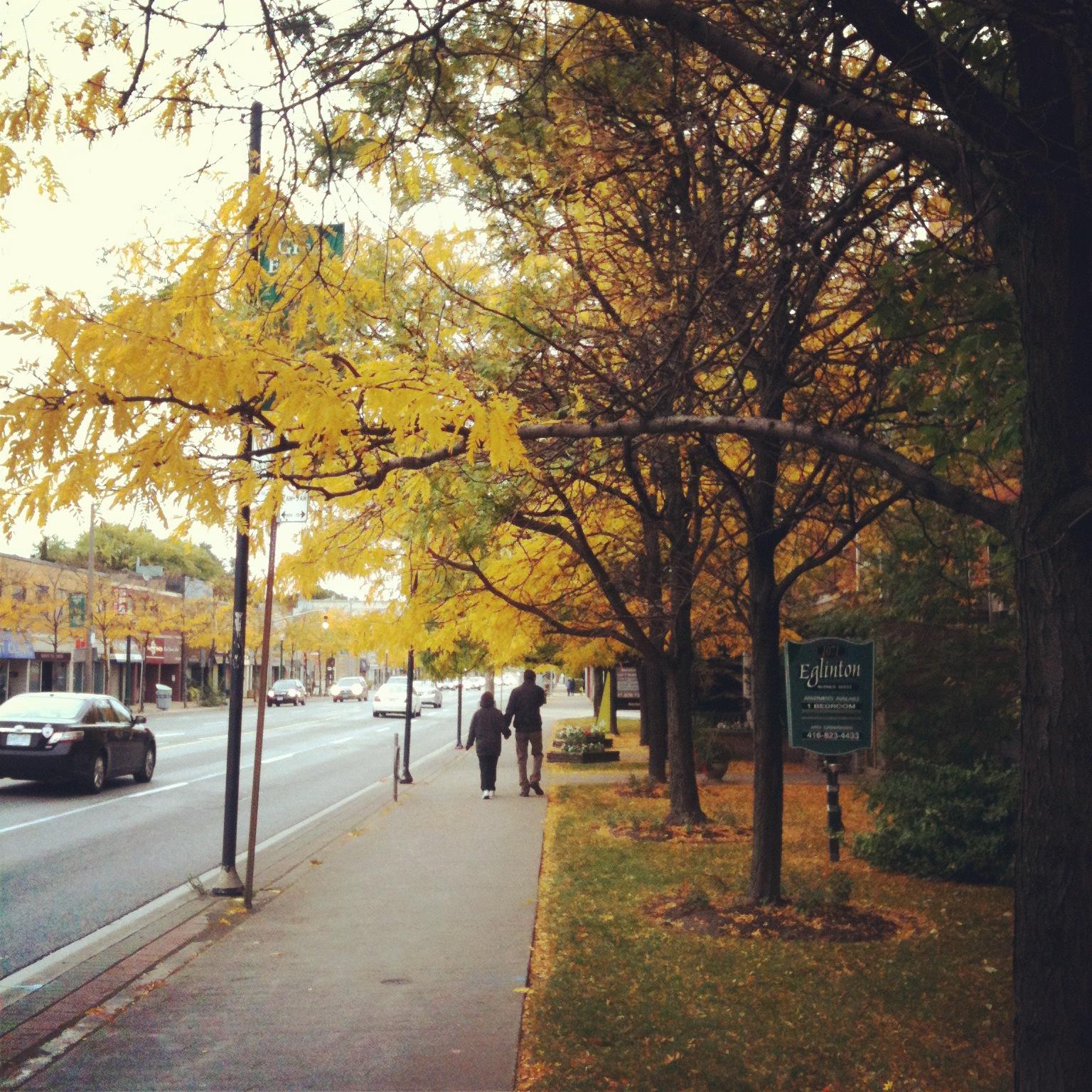 Fall run in Toronto on Eglinton Street