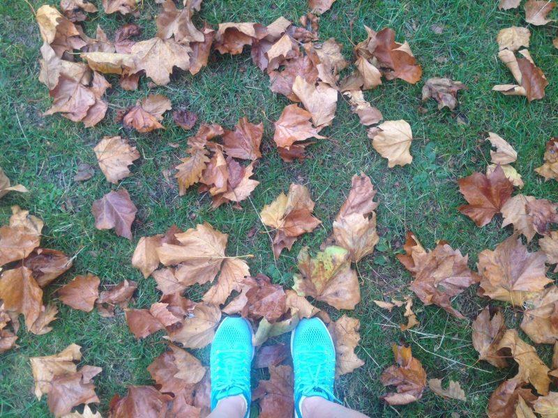 Autumnal running